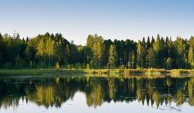 Forest reflecting on lake Stock Photo