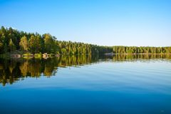 Forest reflecting in lake Royalty Free Stock Photography