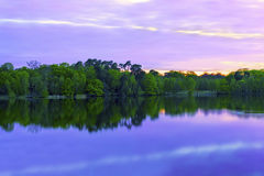 Forest reflecting on water. A calm and peaceful lake with a forest reflecting in it. A purpley blue colour sky which also reflects onto the water Royalty Free Stock Photos