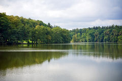 Forest reflection. On smooth surface of the lake Royalty Free Stock Photo
