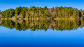 Forest reflection as seen in  lake in Gothenburg Sweden. During spring 2018 April Royalty Free Stock Photos
