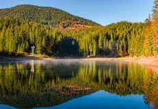 Forest reflection on foggy surface of Synevyr lake. National Park Synevyr, Ukraine - October 23, 2016: forest reflection on foggy surface of Synevyr lake. high Royalty Free Stock Images