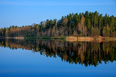 Forest reflection in the lake. Forest reflection calm lake water, the morning light Royalty Free Stock Photography