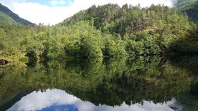 Forest reflection in a lake. At Morkidsdalen park Skjolden Norway Stock Images