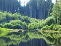 Forest reflection in a pond. South Bohemia stock photography