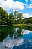 Forest Reflection verde nel lago Immagine Stock Libera da Diritti