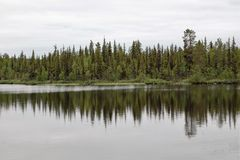 Forest reflections. Near midnight in the north of Sweden,rain clouds, but still brightly Royalty Free Stock Photo