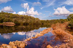 Forest reflections in water. Forest refelctions in the water under a nice sky Stock Photos