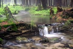 Forest river. With waterfall - long exposure Stock Photos