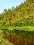 Forest river 4. A forest river paysage view Royalty Free Stock Photography