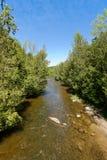 Forest River Fotos de archivo libres de regalías