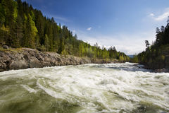 Forest River. A fast moving river with white water rapids Royalty Free Stock Images