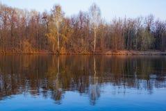 Forest River Imagenes de archivo