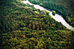 Forest. A forest with river from above stock images
