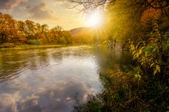 Forest river in autumn mountains at sunset. Forest river in autumn mountains. lovely grassy shores with yellowed trees and rocky cliff. gorgeous nature autumnal Royalty Free Stock Image