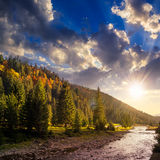 Forest river in autumn mountains at sunset Stock Images