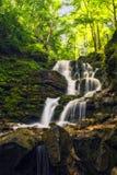 Forest river waterfall. Shepot falls, Carpathians Stock Photo