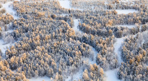 Forest river during cold winter day, top view stock photography