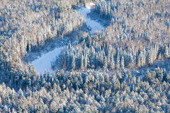 Forest river in cold winter day, top view stock images