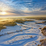Forest river during cold winter morning, top view Stock Image