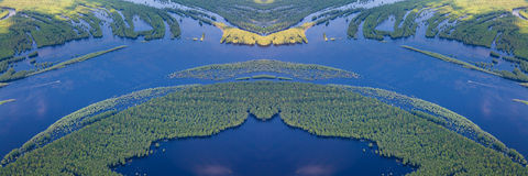 Forest river in flooding, top view Royalty Free Stock Images