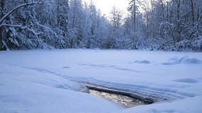 Forest river flowing under ice in winter time stock footage