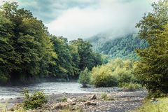 River in the mountain royalty free stock image