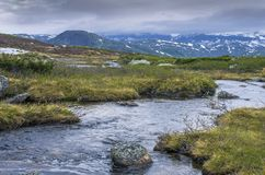 Forest River in the mountains in Norway. Hiking background.  stock photos