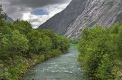 Forest River in the mountains in Norway. Hiking background.  royalty free stock photos