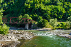 Forest and river near the mountans. Bridge through the forest river near mountains Stock Image