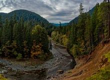 Forest River olímpico imágenes de archivo libres de regalías