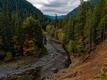 Forest River olímpico fotografía de archivo