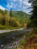 Forest River olímpico fotografía de archivo libre de regalías
