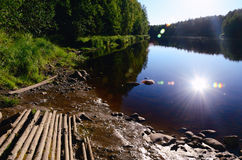 Forest River op een de Zomeravond Stock Afbeelding