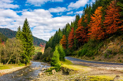 Forest river by the road in autumnal countryside. Narrow forest river by the road in autumnal countryside. lovely nature scenery with colorful hills in a Royalty Free Stock Photography