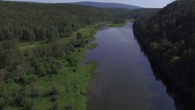 Forest river . Russia. Aerial view. Forest river and Sky. Russia. Aerial view stock footage
