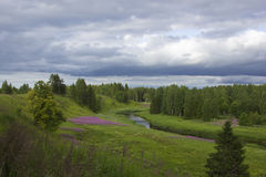 Forest river, Russia Royalty Free Stock Photo