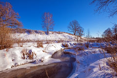 Forest River with Snow at Early Spring Stock Image