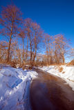 Forest River with Snow at Early Spring Stock Photo