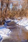 Forest River with Snow at Early Spring Royalty Free Stock Photography