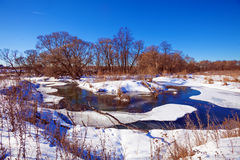 Forest River with Snow at Early Spring Royalty Free Stock Image