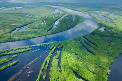 Forest river in spring, top view Stock Photos
