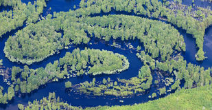 Forest river in spring, top view Stock Photo