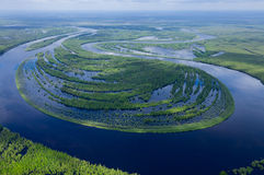 Forest river in spring, top view Stock Image