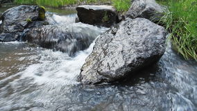Forest river with stones stock footage