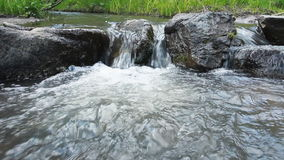 Forest river with stones stock video footage