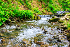 Forest river with stones and moss. Mountain river with stones and moss in the forest near the mountain slope horisontal Stock Photography