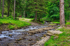 Forest river with stones and moss Royalty Free Stock Photos