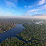 Forest river in summer evening, top view Royalty Free Stock Photos
