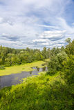 Forest river top view Royalty Free Stock Photo